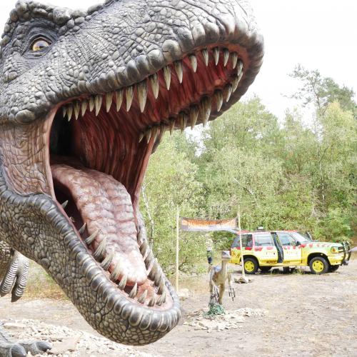 11_Pressefoto_T-Rex_Web.jpg